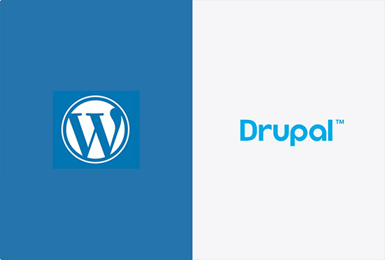 Wordpress web design and content management systems are easy-to-manage, and offer thousands of plugins to add rich features to your site, saving you time & money.